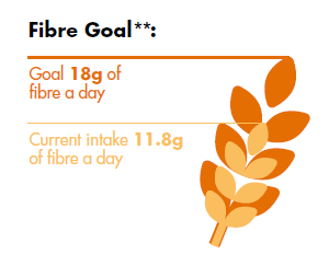 FSS fibre goals